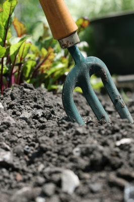How To Prepare Soil For A Vegetable Garden Beaulieu Industries Of Maine